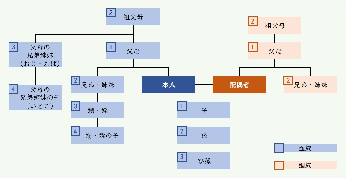 shinnzokhyou2