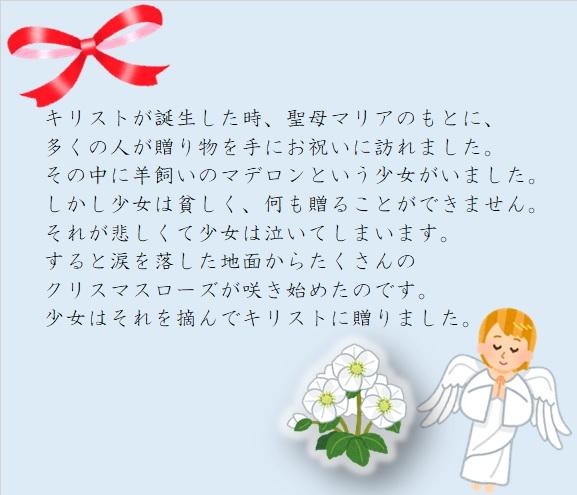 kuri4